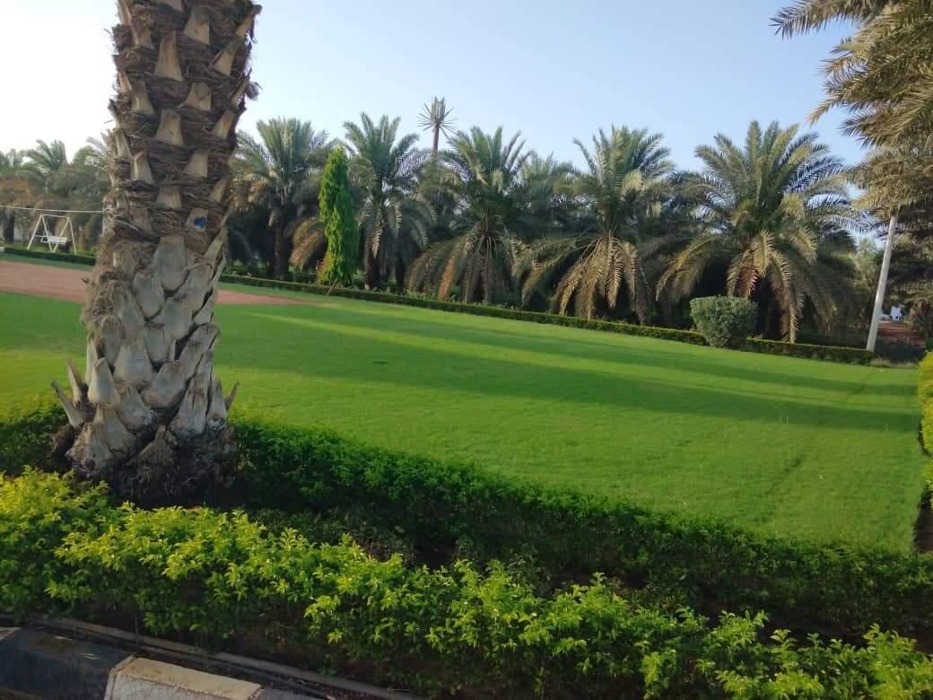 """شاهد بالصور: المزرعة الفخمة لـ رجل الأعمال"""" عبدالباسط حمزة"""" المصادرة لصالح الدولة"""