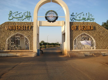 مدير جامعة الجزيرة يشكل لجنة لحظر التجاوزات منذ العام 1989