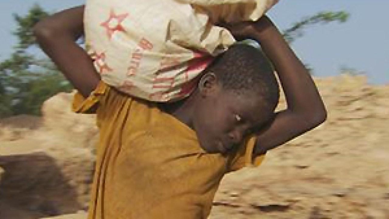 المجلس القومي لرعاية الطفولة يؤكد اهتمام الدولة بمحاربة ظاهرة عمالة الأطفال