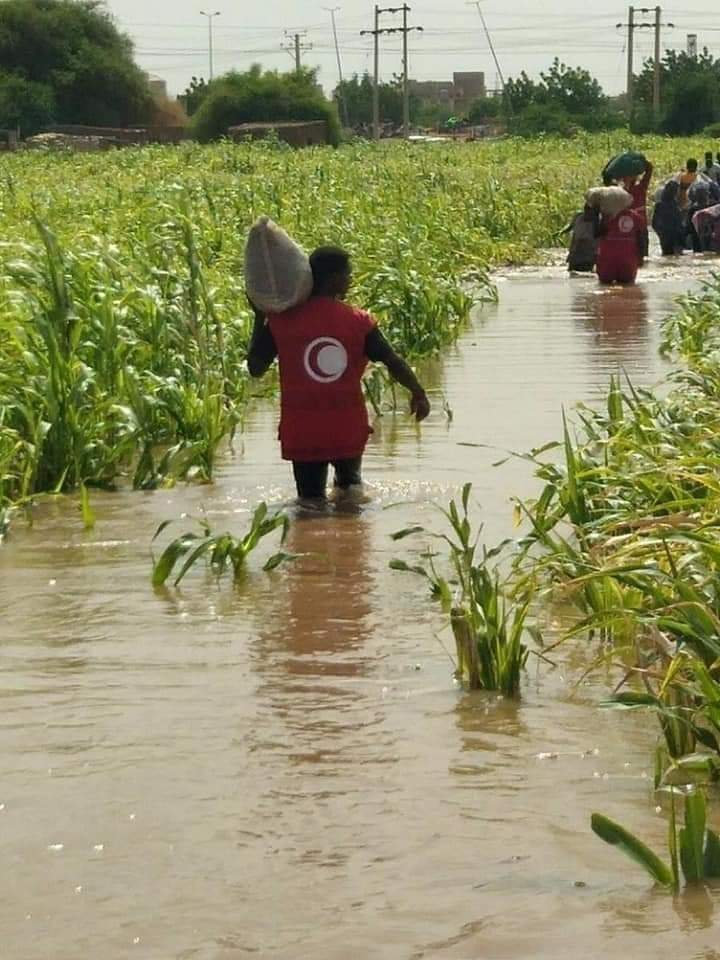 إخلاء سكان الحلفايا للمنطقة نتيجة فيضان النيل