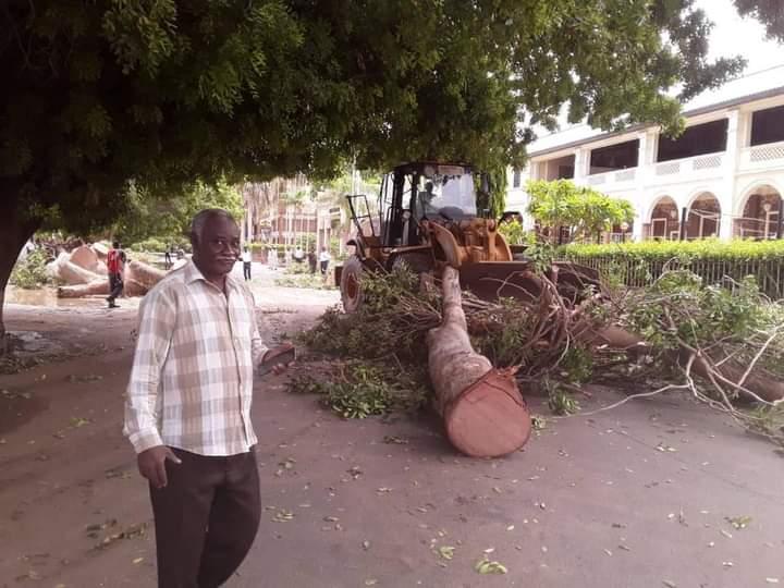 مدير هيئة الطرق يقف على إزالة الأشجار التي سقطت مساء أمس بشارع النيل