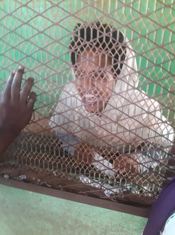 تقرير يكشف إعتداء ضابط شرطة على الناشطة دعاء طارق والمخرج حجوج كوكا